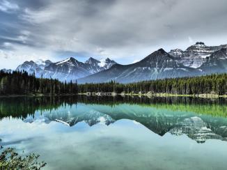 176. Herbert Lake