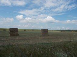 67 Fields near Nagykaracsony